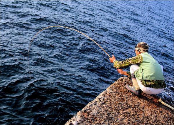 加茂の北防波堤で イサダを播いてメバル・アイナメ・タナゴを釣る。これが面白い。