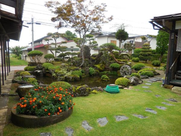 石と手入れのされた木が絵になる、緑の芝生も効果的だった、実にいい庭だ今時こんな落ち着いた和風な庭園を持つ家は少なくなってしまった、左が母屋。
