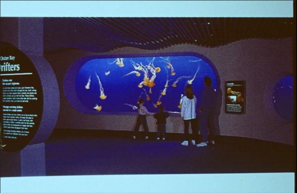 モントレー水族館のクラゲ水槽。幅7m高さ4mで、日本で作り船で運んだものである。