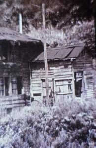 独立学園の正面玄関。となりでヤギを飼っていた。